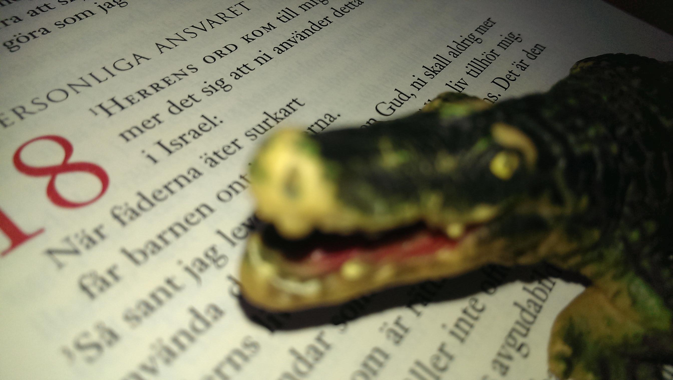Är Gud en krokodil?