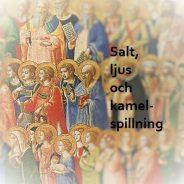 Salt, ljus och kamelspillning