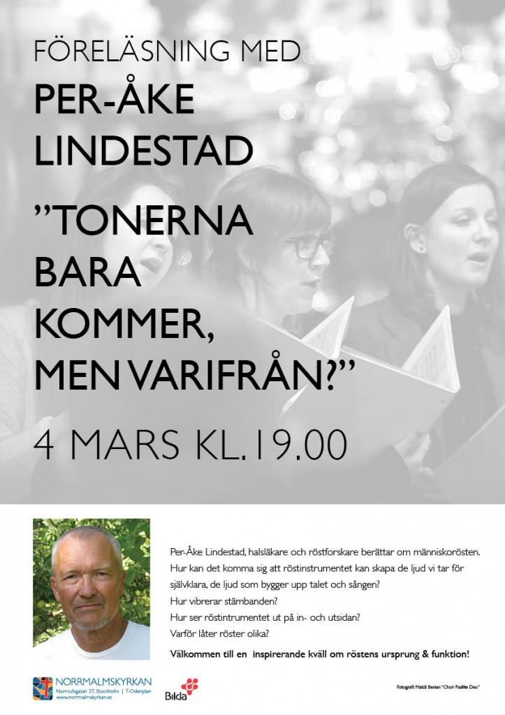 Per-Åke Lindestad webb